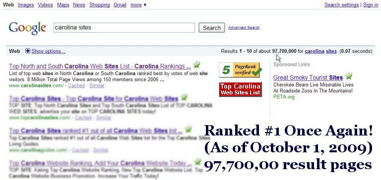 Screen shot proof of Top Carolina Web Sites List #1 Rank.